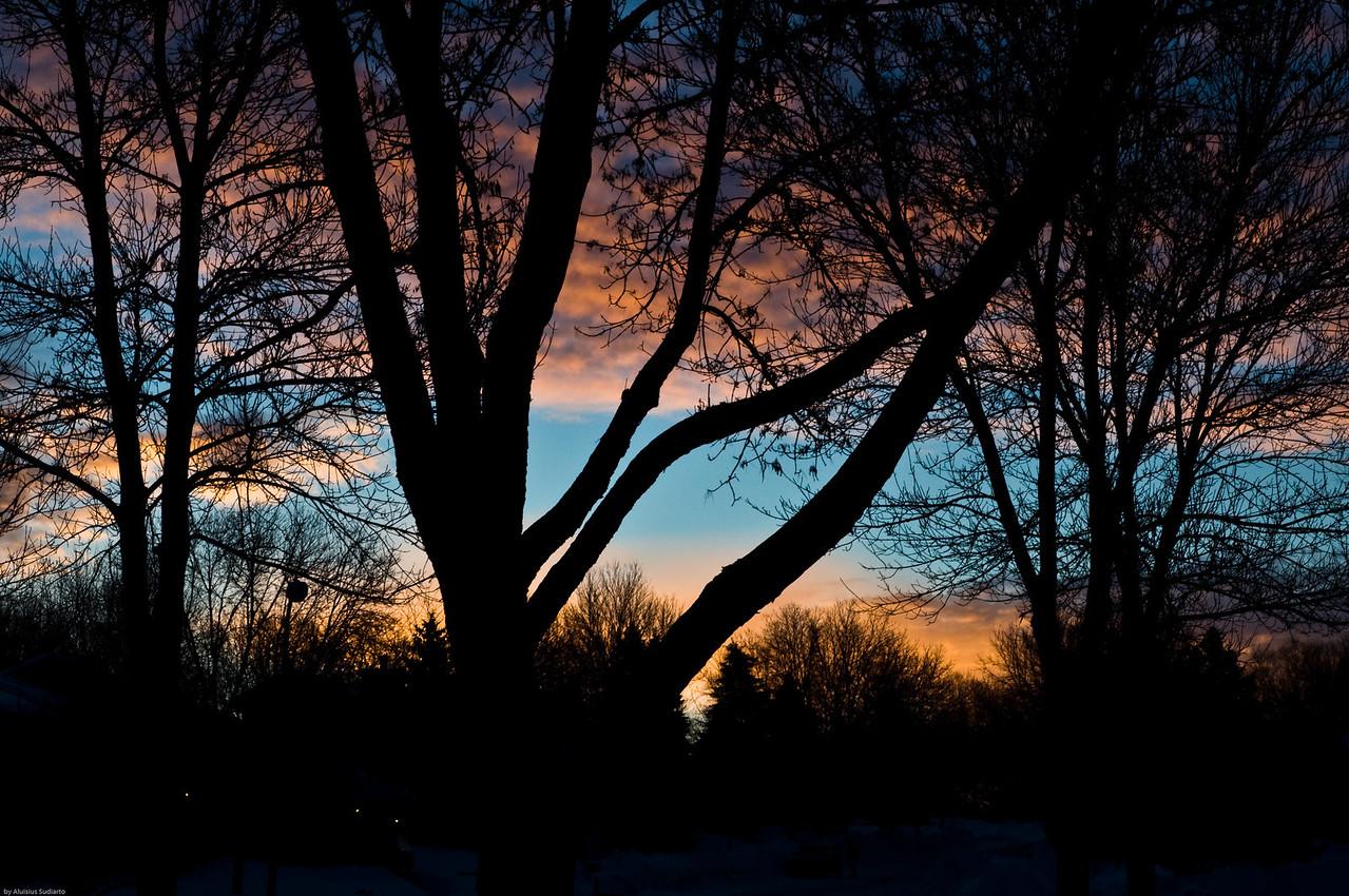 Cold But Beautiful Sunrise